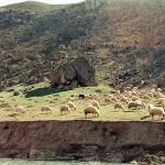 Ilhara Valley in Cappadocia