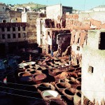 Tanning Pits in Fez