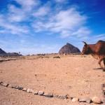 Countryside in Tigre Province, Ethiopia