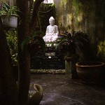 Courtyard Garden in Hoi An, Viet Nam