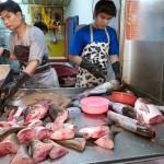 Fresh Fish For Sale in Chinatown, Bangkok, Thailand
