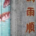 Painting of Koi at Haw Par Villa, Singapore